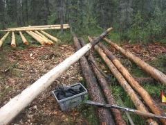 Cabin pole almost peeled