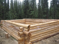 Cabin Wall